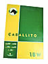Hoja Papel Caballito x10 1n8W (100 grs.)